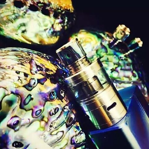 Drip tip shell fin Abalone