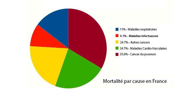 Mortalité par cause