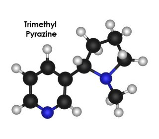 Trimethyl Pyrazine